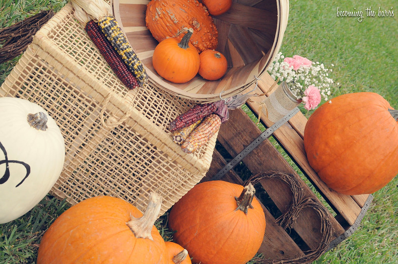 diy home pumpkin patch painting party decor