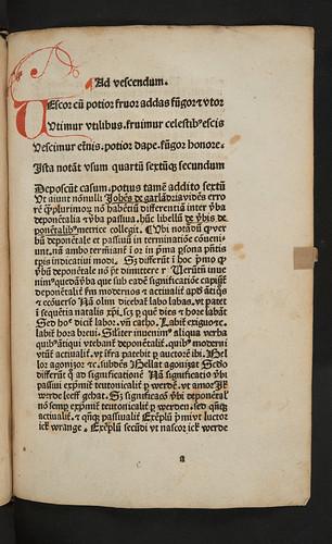 Penwork initial with flourishing in Garlandia, Johannes de: Verba deponentalia