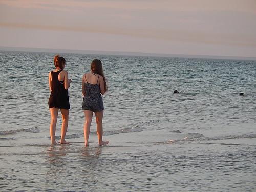 Walking Women; Swimming Dogs