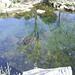 <p><a href=&quot;http://www.flickr.com/people/30223909@N02/&quot;>dominicorosun</a> posted a photo:</p>&#xA;&#xA;<p><a href=&quot;http://www.flickr.com/photos/30223909@N02/12917064414/&quot; title=&quot;SA404494&quot;><img src=&quot;http://farm3.staticflickr.com/2816/12917064414_5a892988d3_m.jpg&quot; width=&quot;240&quot; height=&quot;180&quot; alt=&quot;SA404494&quot; /></a></p>&#xA;&#xA;