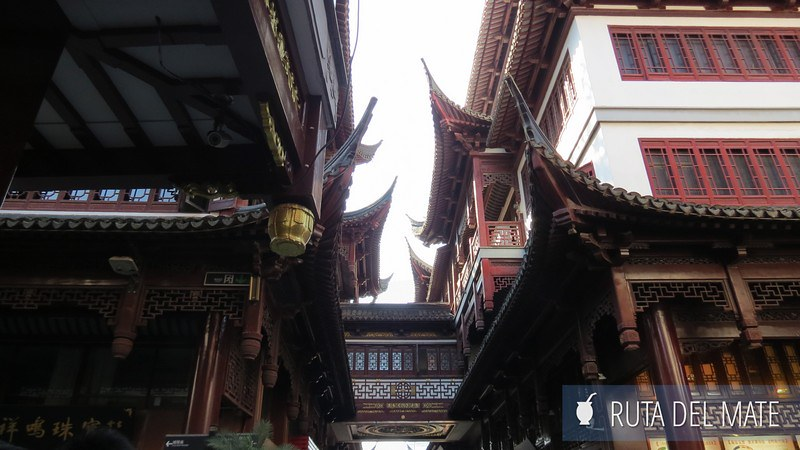 Shanghai China (8)