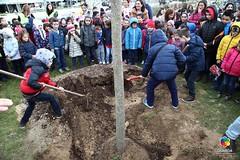 Guarda comemorou o Dia Mundial da Árvore