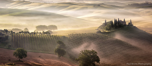 Belvedere Misty Sunrise