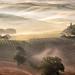 Belvedere Misty Sunrise by Panorama Paul
