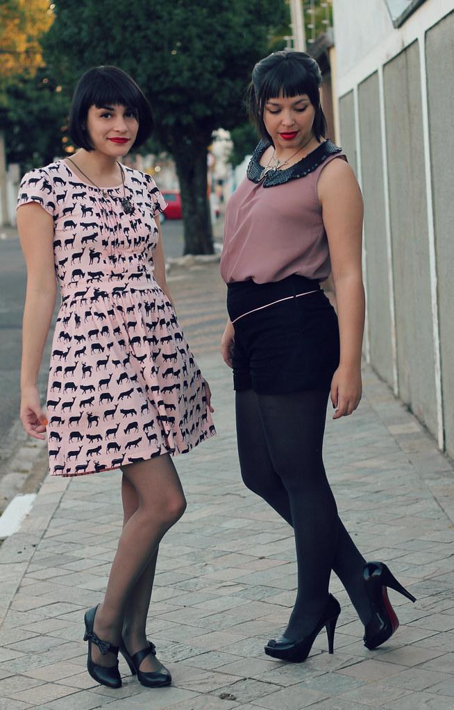 rosa6
