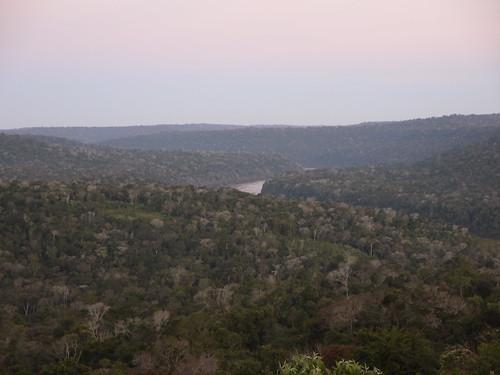 Ruta de la Selva
