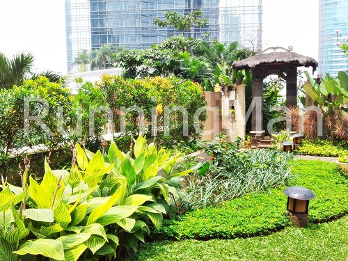 JW Marriott Hotel 08 - Garden Terrace