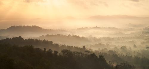 Divine Morning