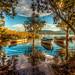 Bafa Lake, Turkey by Nejdet Duzen