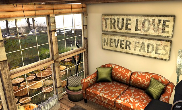 True Love - indoor