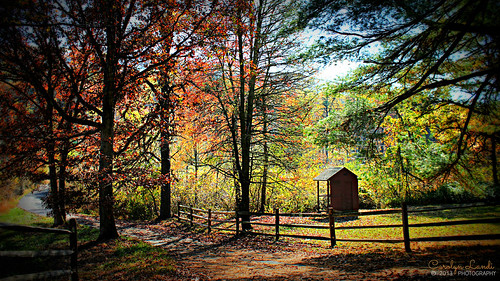 road autumn trees fall nature grass leaves fence landscape colorful pennsylvania country seasonal scenic pa lane outhouse picturesque buidling kunkletown
