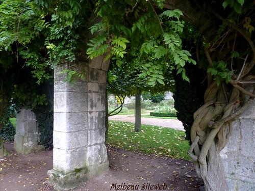 Chartres d'automne