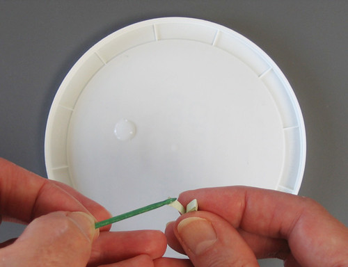 Quilled-Marquise-Coil-Gluing