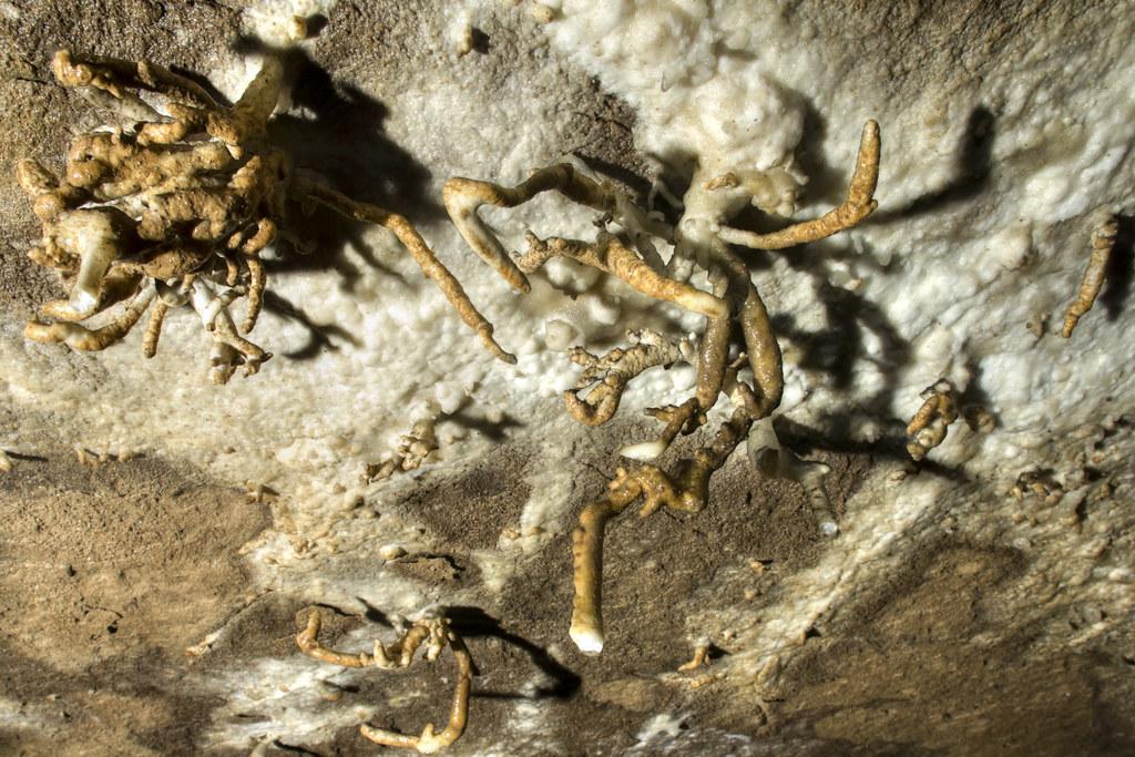 Helectites