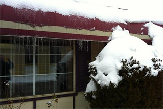 Day 7 Icicles