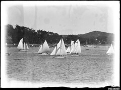 Sailboats on Pittwater