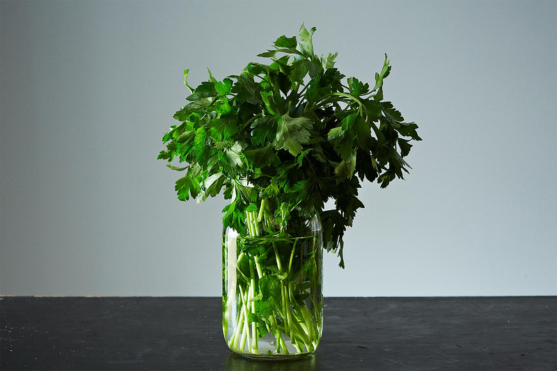 How to Save Fresh Herbs