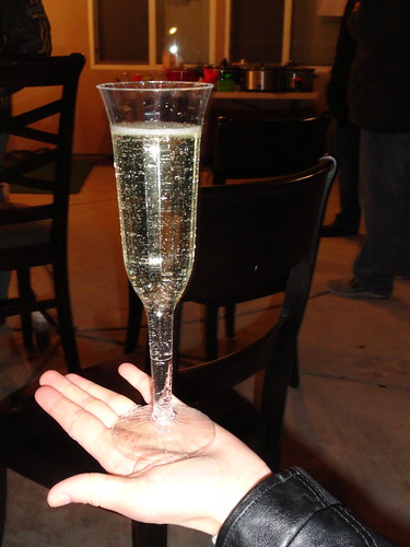 champagne by lynne kelley author
