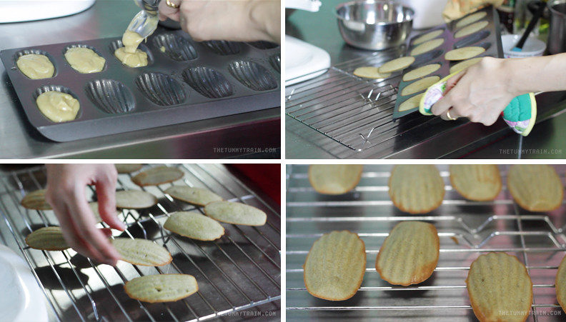 12634971074 b68a92b44d b - My not-so-green Green Tea Madeleines and my blogger blues