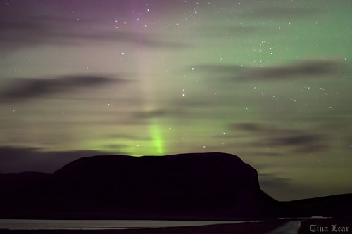 More Aurora Brora
