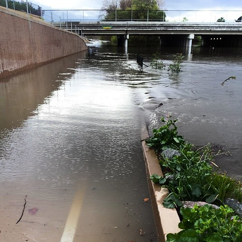 San Jose Guadalupe River Trail #flooded under Montague Expressway.