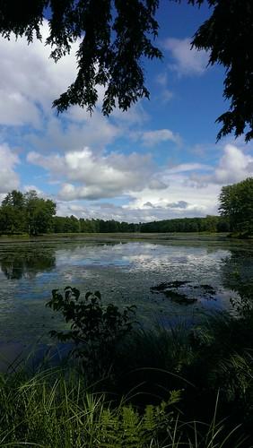 newyork phonecam pond upstatenewyork htc constantia phonephotog htcevo4glte danielpiraino socialvisual
