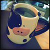 Forget cash cow, I've got a coffee cow. by Melissa Maples