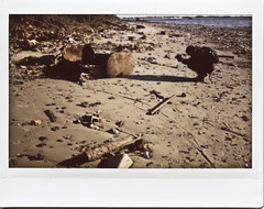 Dead Horse Bay, Brooklyn, NY