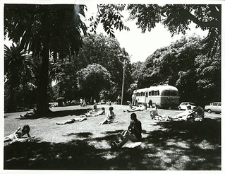 Lunch scene, Albert Park, Auckland