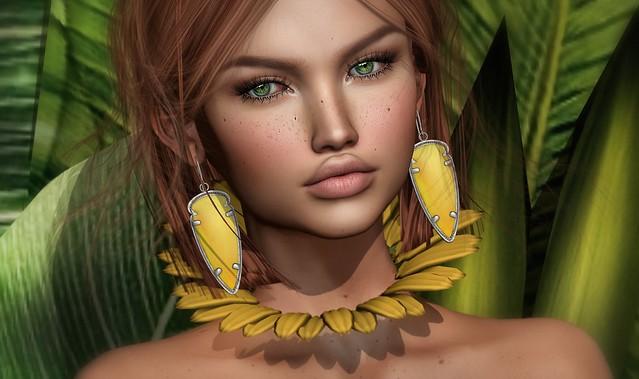 ~Sunflower