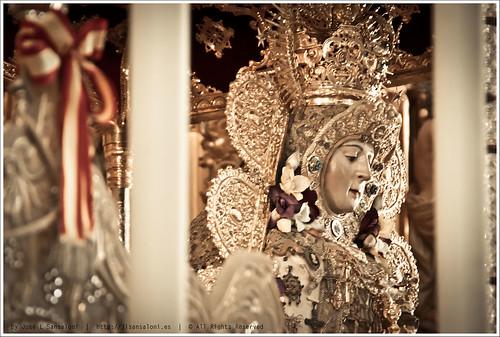 Rocio 2013 Blanca Paloma 2 by Sansa - Factor Humano