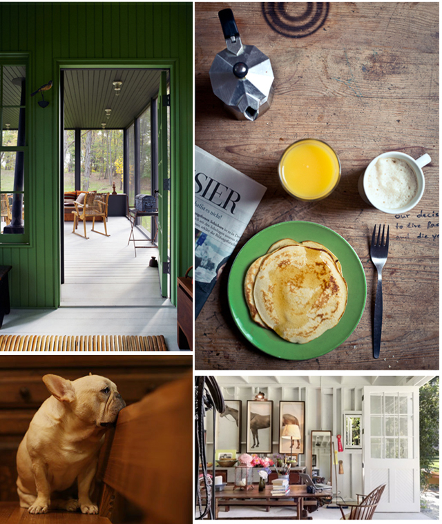 photo collage-green-frenchie