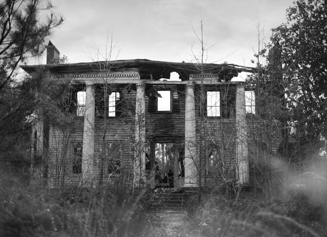 Casulon Plantation | The Southerly