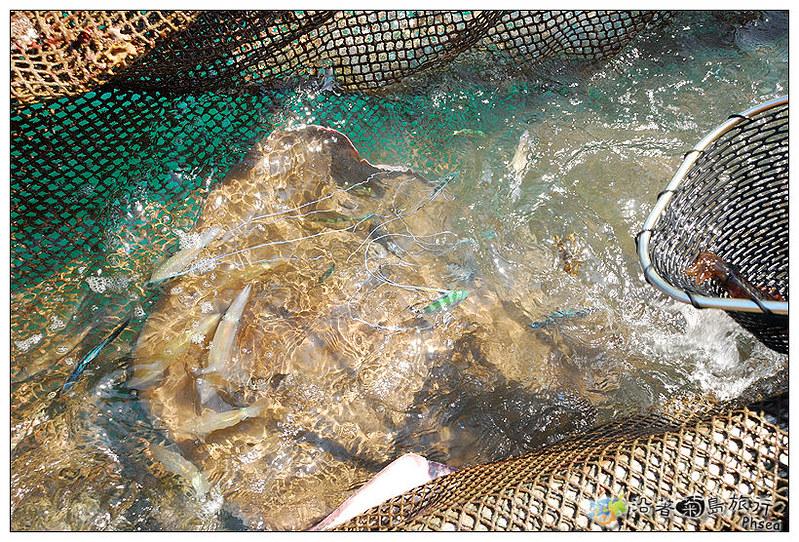 2013元貝休閒漁業_38