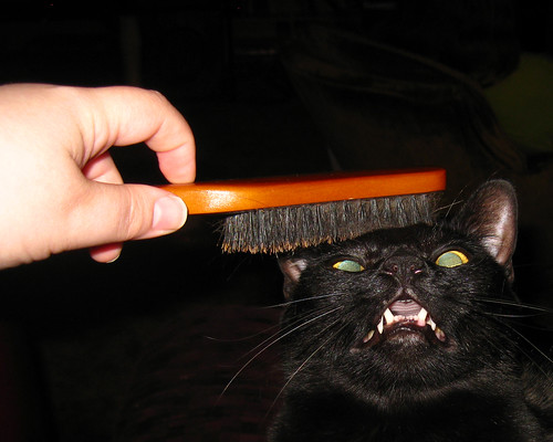 Etrigan's new brush 1
