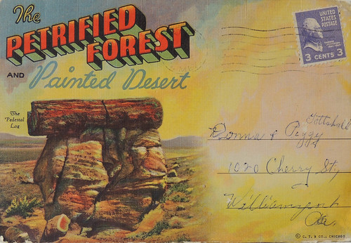 postcard folder: Petrified Forest and Painted Desert - The Pedestal Log
