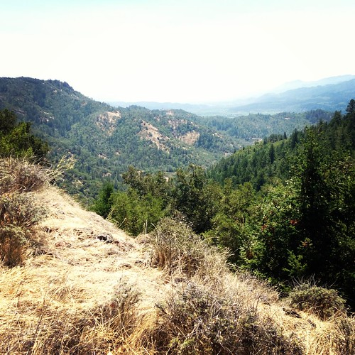 Oat Hill hike in Calistoga