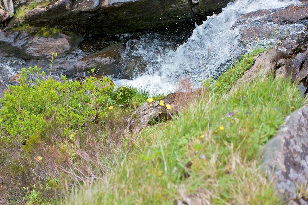 Tumbling water in Gleann Taitneach