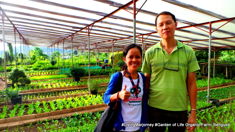 Benguet: The Garden of Life Organic Farm
