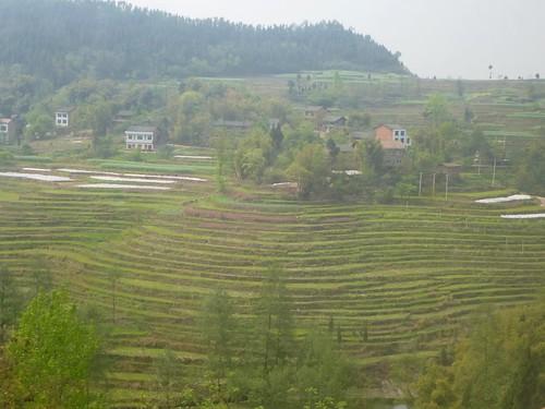 Hubei13-Wuhan-Chongqing-Dazhou (11)