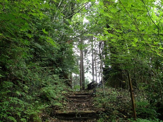 横蔵寺 東海自然歩道