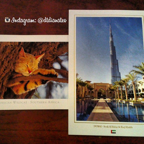 Postcard 27 - Dubai & South Africa