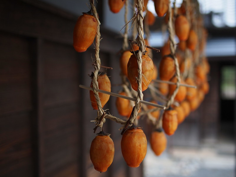 Dried Persimmon in Yokohama, 横浜の干し柿