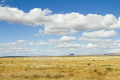 New Mexico  Prairie