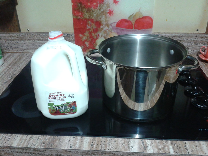 yogurt making 2014