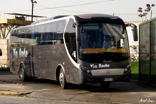 Vía Norte (Buses Navidad) en Santiago | Zhong Tong Creator / CRCP78