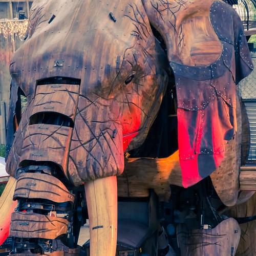 elephant france canon square adobe tamron nantes lightroom boma paysdelaloire dfoto adobelightroom machinesdelîle eos5dmarkiii tamronsp2470mmf28divcusd machinesoftheisle