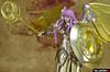 [Imagens] Saint Cloth Myth - Athena Kamui 13289277555_bc744f8497_t
