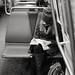 Green Bay reader by JEO Photography