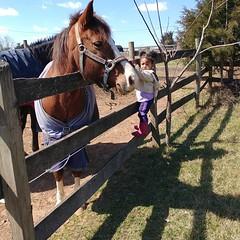 KK & Wendell  #hangingwithmamaree #farmgirl #akaleirenee #horses #kkandmamaree